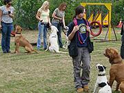 Hundeschule Kaiserslautern