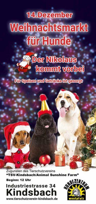 weihnachtsmarkt für hunde